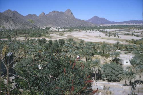 Oasis at Djanet, Algeria