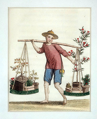 Chinese travelling salesman with plants and trees, engraving from La Chine en miniature, 1811, by Jean Baptiste Joseph Breton de la Martiniere