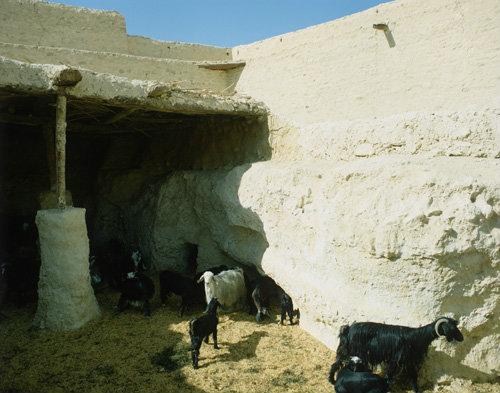 Egypt goat byre in St Paul