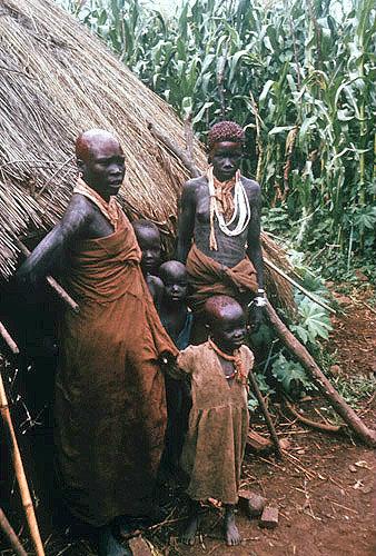 Ethiopia, Shangala, bush family