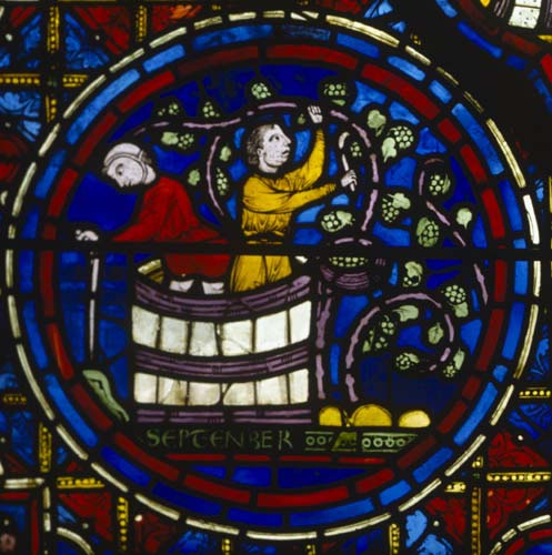 September, Zodiac window, 13th century stained glass, south ambulatory, Chartres Cathedral, France