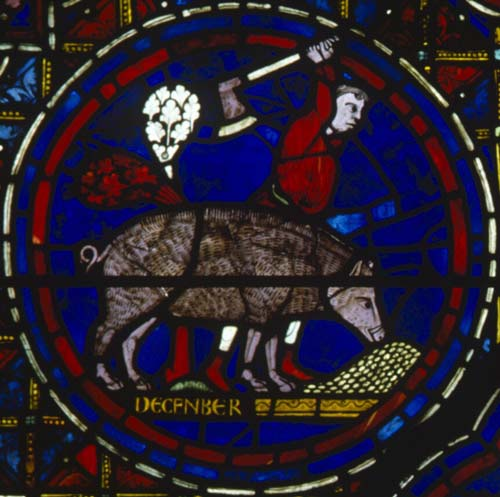 November, although named December, Zodiac wiindow, south ambulatory, 13th century stained glass, Chartres Cathedral, France