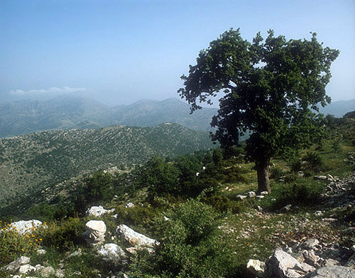 Greece, Arcadia, typical mountain scenery near Langadia