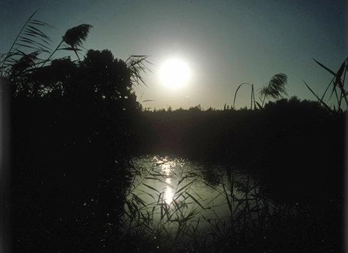 Israel, river Jordan at sunrise