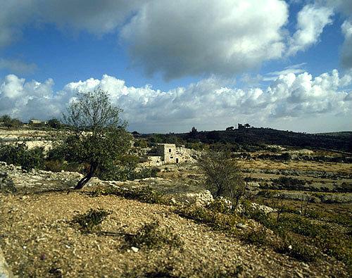 Watch tower in a vineyard near Hebron, Israel