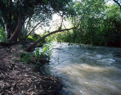 Israel, the River Jordan north of the Sea of Galilee