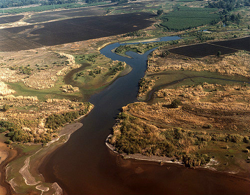 Israel, aerial view of the River Jordan, north of the Sea of Galilee, taken in 1984 before excessive extraction reduced its flow