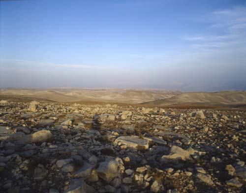Stony ground, Luke 8 v 6, Mark 4 v 16, Matthew 13, South Galilee, Israel
