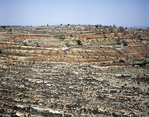 Israel, Samaria, aerial view of terraces between Bethel and Shiloh