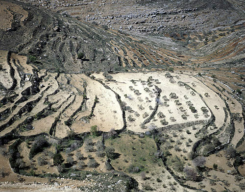 Israel, Samaria, aerial view of terraces between Bethel and Shiloh