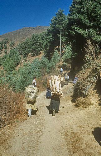 Porters with loads, Nepal