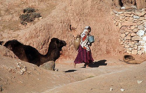 Berber woman with camel, amphora and bucket, Tunisia