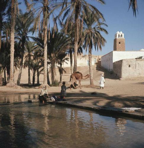 Tunisia Gafsa, Berber woman washing clothes in oasis