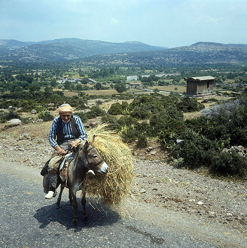 Old man on a donkey below the town of Assos, Turkey