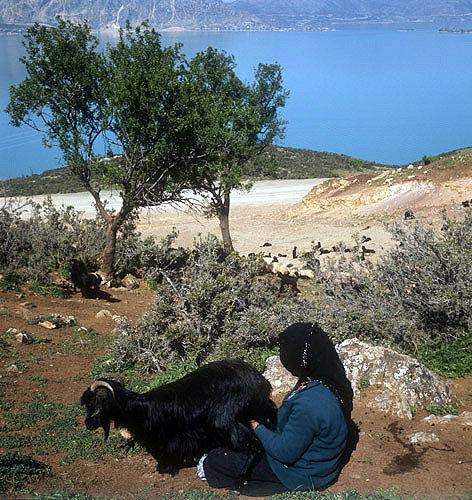 Nomad milking goat, Lake Egridir, Pisidia, south west Turkey