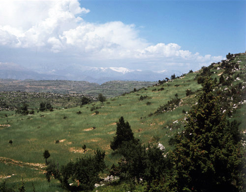 Turkey Cilicia the Tarsus Mountains and wheat fields