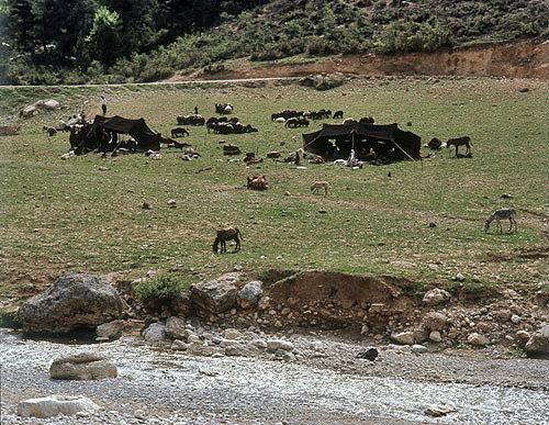 Yuruk (nomads) in the Taurus mountains, Turkey