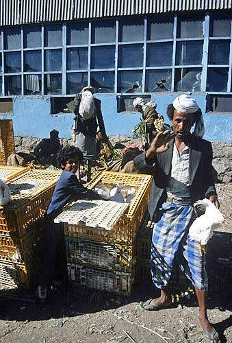 Chicken seller, Al Hammad market, Yemen