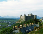 More images from Harlech
