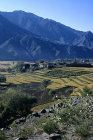 Afghanistan, rice terraces in the Kunar Valley, the  Kunar River runs nearby