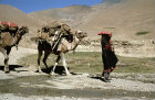 Afghanistan, camel and woman near the Hajigak Pass