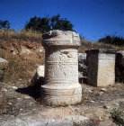 More images from Curium
