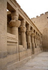 Hathor-headed columns in courtyard of Temple of Isis, Philae, Egypt