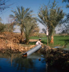 Egyptian working Archimedes Screw to irrigate his land from stream which is at lower level