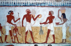 Egypt, Thebes, wall painting of measuring the crop, in the tomb of Menna, tomb no 69 circa 1422-1411 BC
