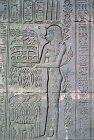 Egypt Dendera relief on temple wall