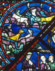 Seven fat kine eaten by seven lean kine, detail from 1210 Joseph window, Chartres Cathedral, France
