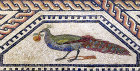 Peacock with apple in its mouth, third century Roman mosaic, Cologne, Germany