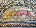 Lion and bull fighting, third century Roman mosaic, Cologne, Germany