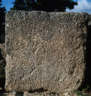 Olympia Greece Coquina or limestone made of shells