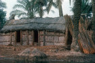 Marsh Arab dwelling built of reeds, Al Chabaish, Iraq