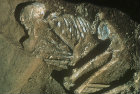 Burial, skeleton with bone ring belt, early dynastic culture, circa 2000 BC, (Mesopotamia), Iraq