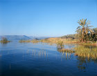 Israel, the Bethsaida Valley and the entry of the River Jordan into the Sea of Galilee
