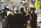 Israel Jerusalem Ultra-Orthodox Jews with live chickens on heads for Kapparot ritual before Day of Atonement