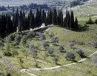 Valley between Nazareth and Cana, Galilee, Israel