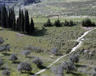 Israel, the valley between Cana and Nazareth, Jesus would have crossed this valley on his way between the towns