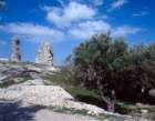 Israel, Bethany, medieval tower