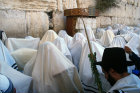 Israel Jerusalem Religious Jews from Cohenim perform the  priestly blessing at the Western Wall during the festival of Sukkot
