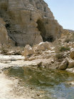 Israel, ein Avdat, pool in the valley