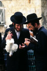 Israel Jerusalem religious Jews inspect a rooster before performing the Kaparot ritual