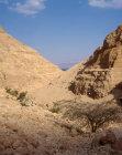 Israel, Ein Gedi, view down Wadi Arugot to Dead Sea