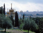 Israel, Jerusalem, Church of Mary Magdalene from an olive grove and the Dome of the Rock behind