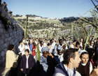 Israel, Jerusalem, Palm Sunday, procession of pilgrims approaching the Lion Gate