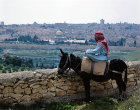 Israel, Jerusalem, Dome of the Rock and Arab on a donkey
