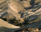 Israel, the Judean Hills and an oasis east of Jerusalem