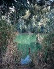 Israel, the River Jordan south of Galilee